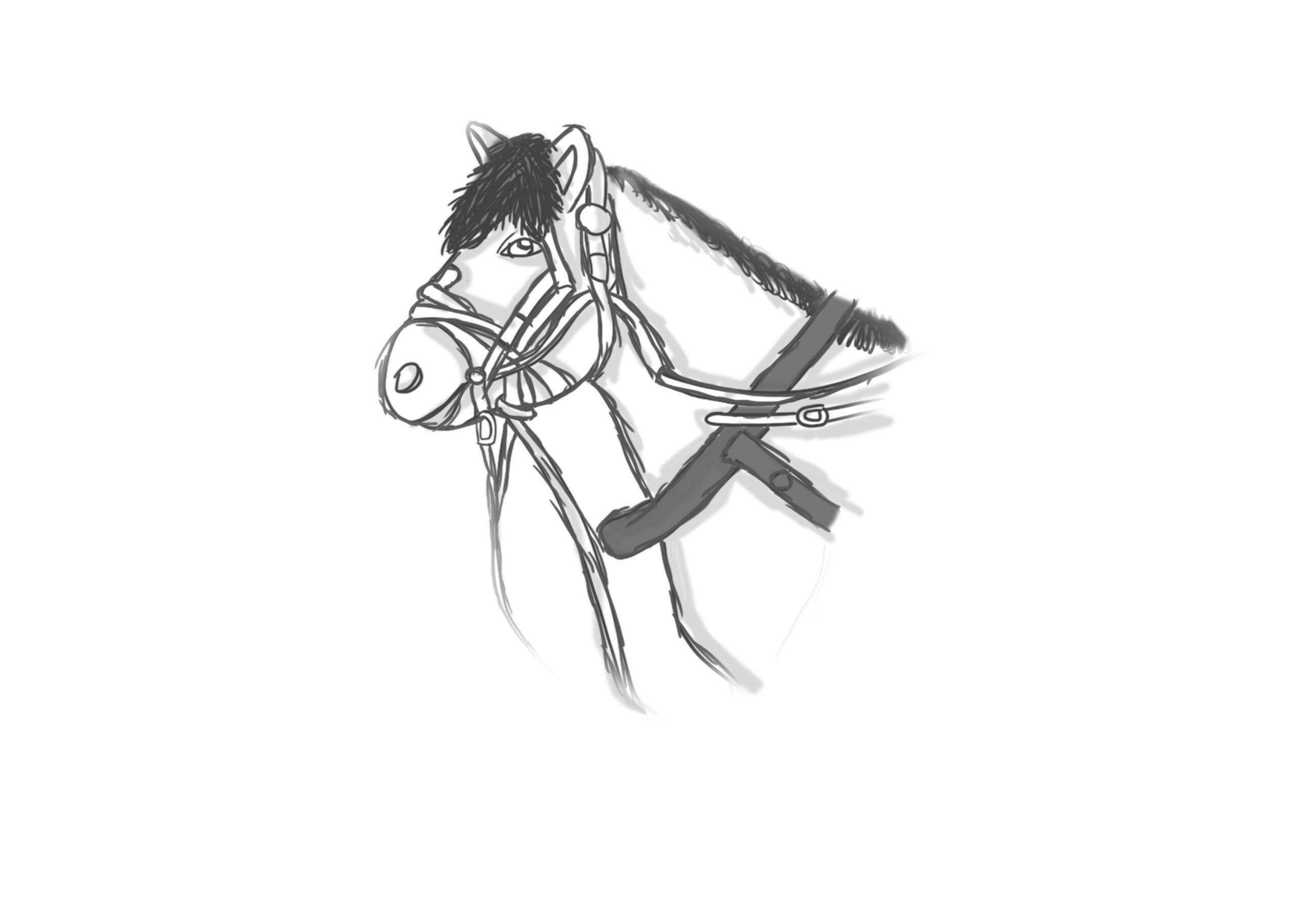 ChnDesign.no CHN chn design illustration ai ps lr wp camilla noddeland chndesign foto veileder grafisk design logo sleksbok re-design telemarksavisa prosjekt oppdrag tegning simpsons coco bokdesign avisdesign emballasjedesign blomsterbok musiskkplakat skriftdesign tidsskrift veifinningsystem adobe canon hjem telemark vestfold norge reklame skiltmaker grenland støtteelement drawing illustrator